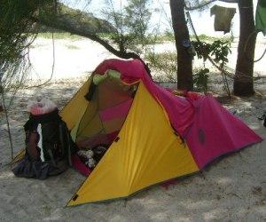 Apexus Tadpole Tent